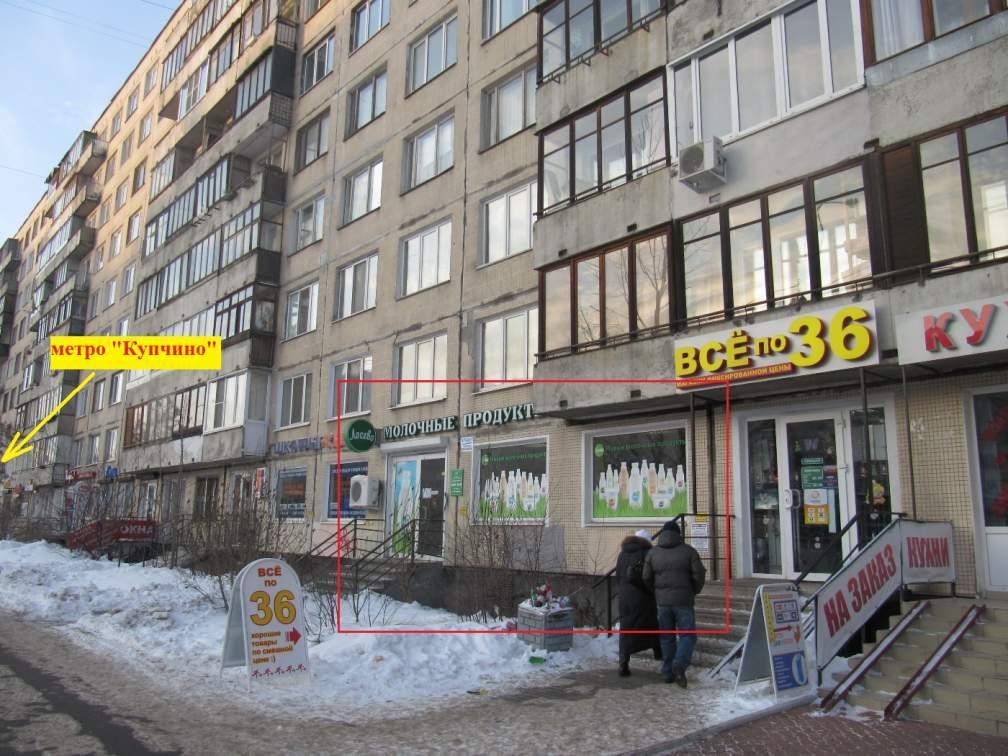 проституток дешевый санкт петербурга метро купчино