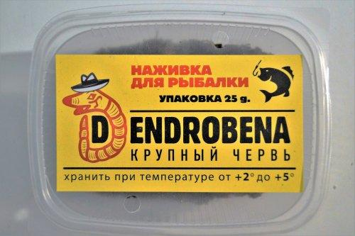 чем заменить червей для рыбалки