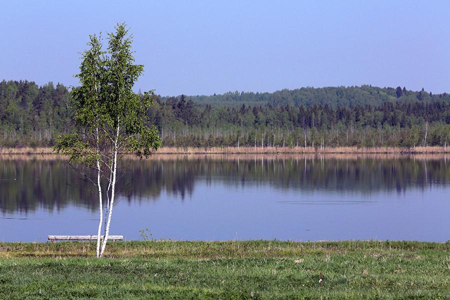 фото с рыбалки озеро в ярославской области